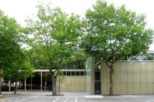 Sporthalle Käthe-Kollwitz-Schule